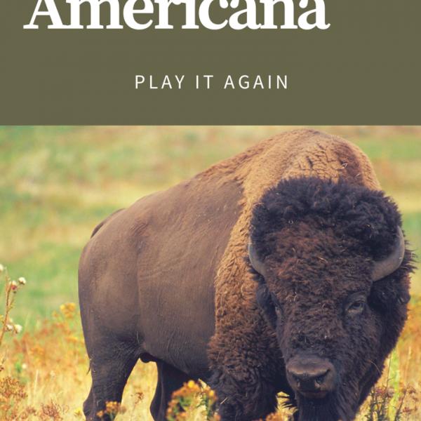 americana playlist, travel playlist