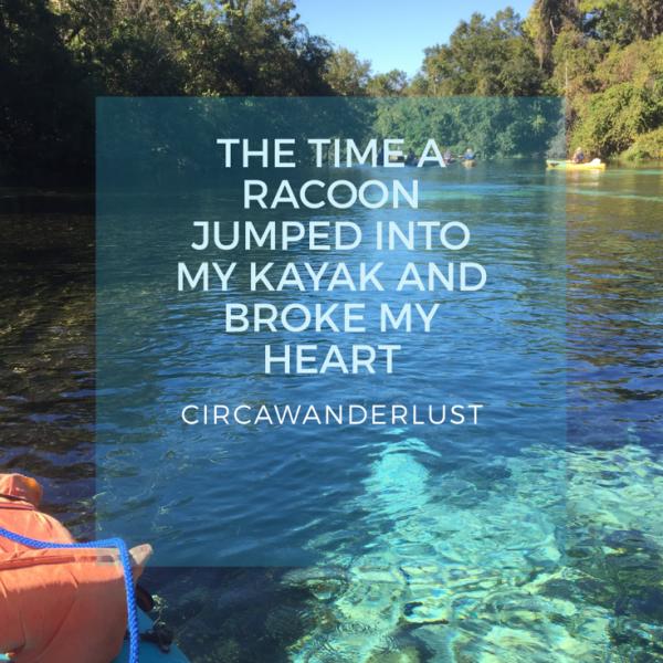 CircaWanderlust, wanderlust, kayaking, florida, things to do in FL