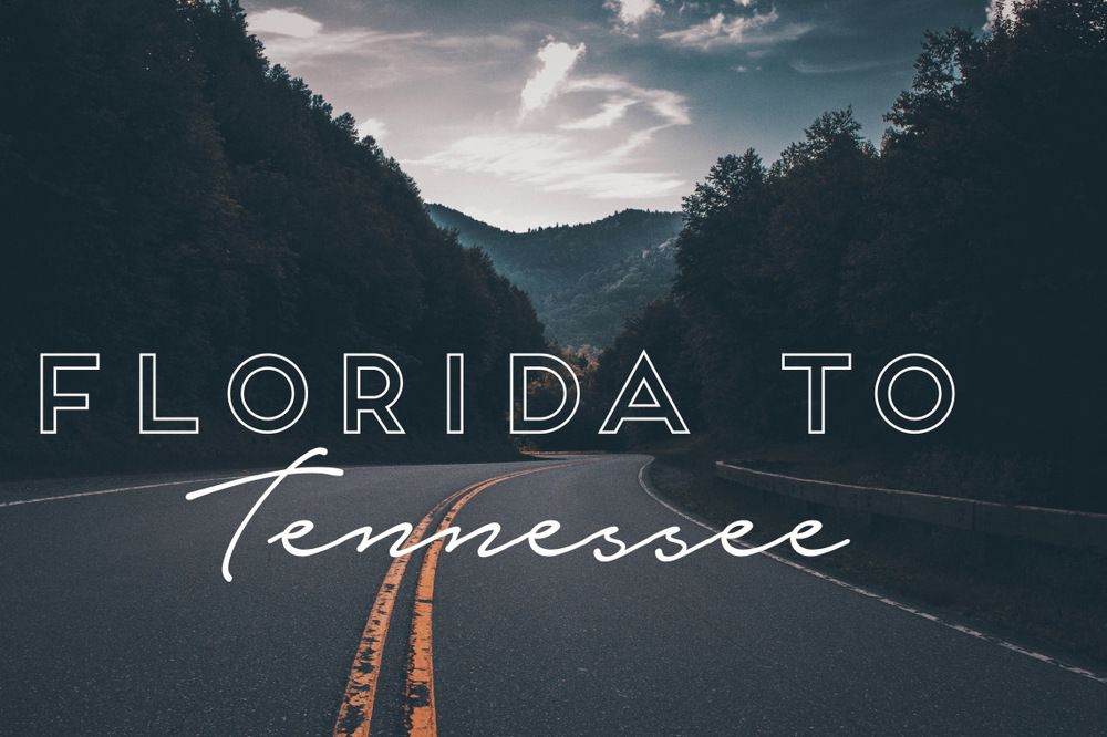 FL to TN – Why We Are Trading in Palm Trees for Smoky Mountains