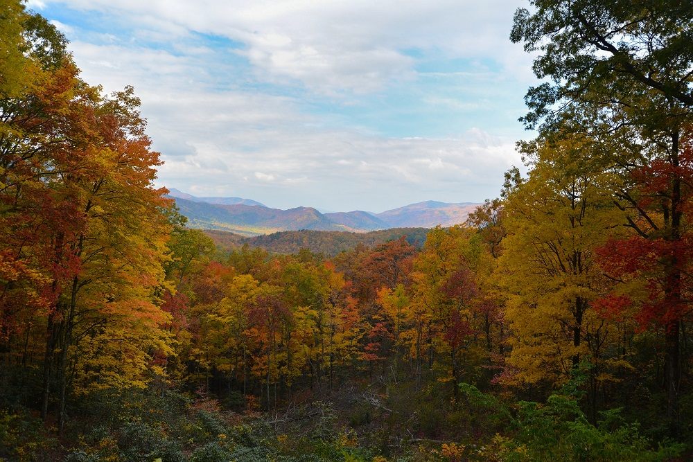 Things To Do in Gatlinburg, anakeesta, outdoors in Tennessee