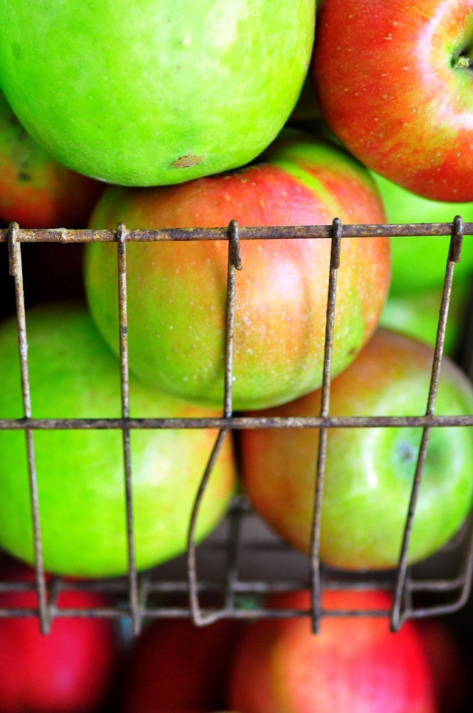 Finger Lakes Wine Country apples