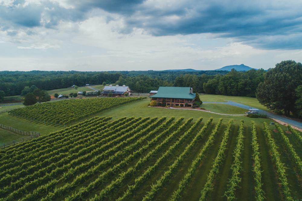 Yadkin Valley, North Carolina Wines